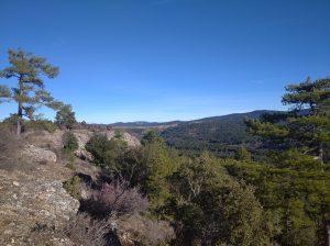 El límite entre el meso y supramediterráneo en la Serranía de Cuenca.