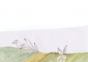 De amor y poetas… Cuenca